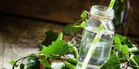 Консервация березового сока: два рецепта домашних заготовок