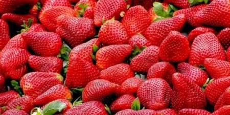 Клубника — королева июня: 3 вкусных десерта с использованием ягоды