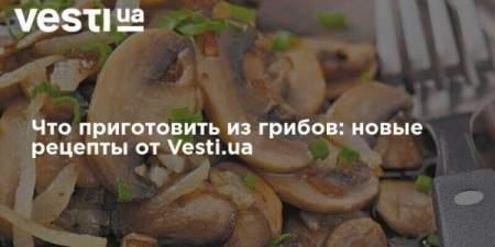 Что приготовить из грибов: новые рецепты от Вестей